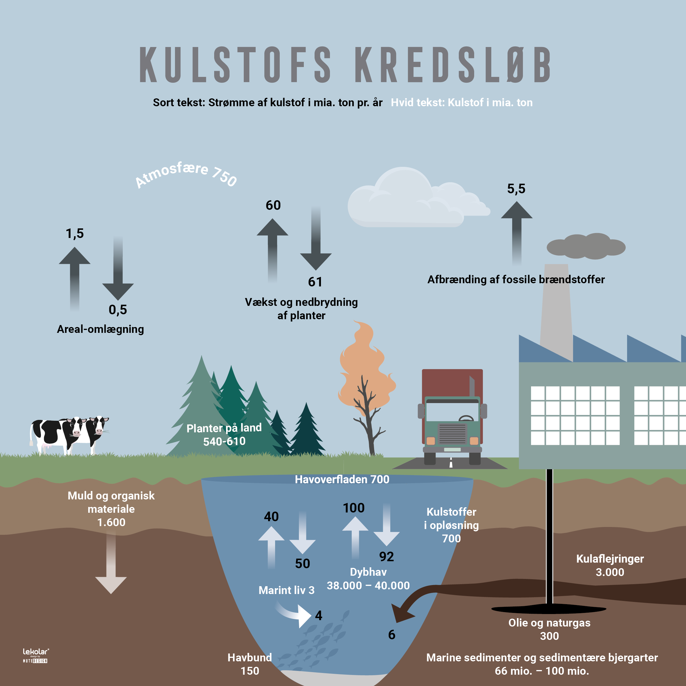 Kulstof-kredsloeb-fysik-naturfag-motiv-mutedesign